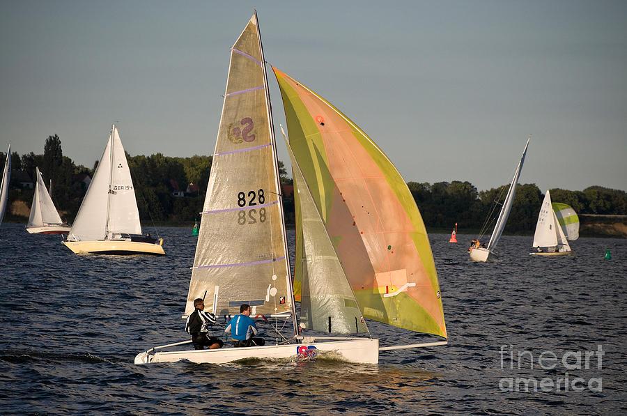 Sailing Photograph - Sailing Dinghy At Stralsund Regatta Germany by David Davies