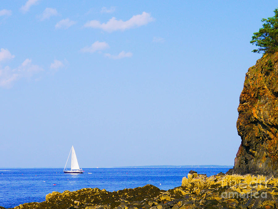 Sailboat Photograph - Sailing by Ernest Puglisi