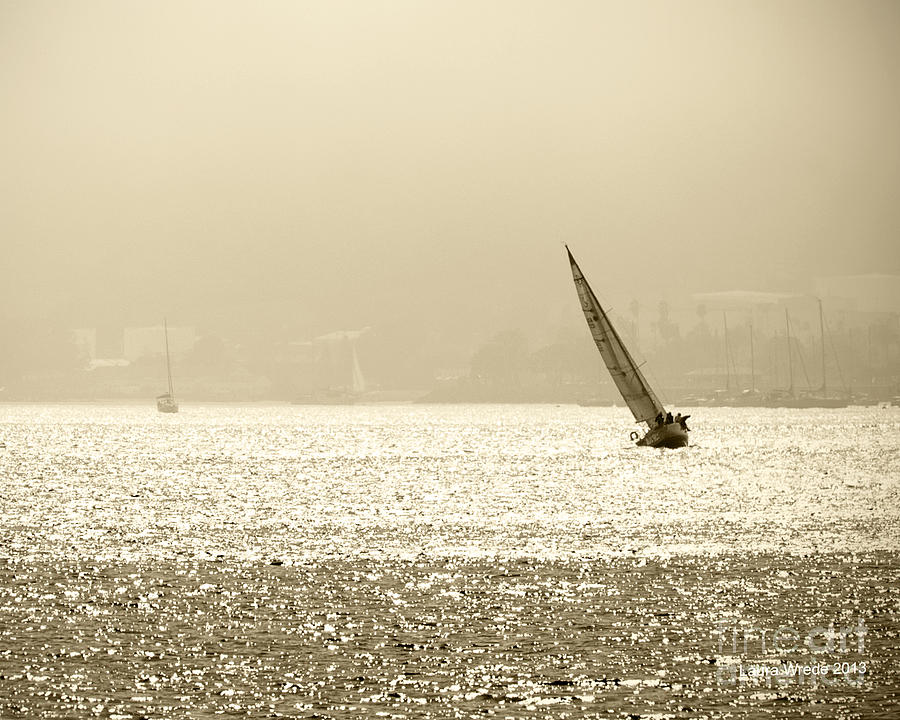 Ocean Photograph - Sailing In San Diego Harbor by Artist and Photographer Laura Wrede