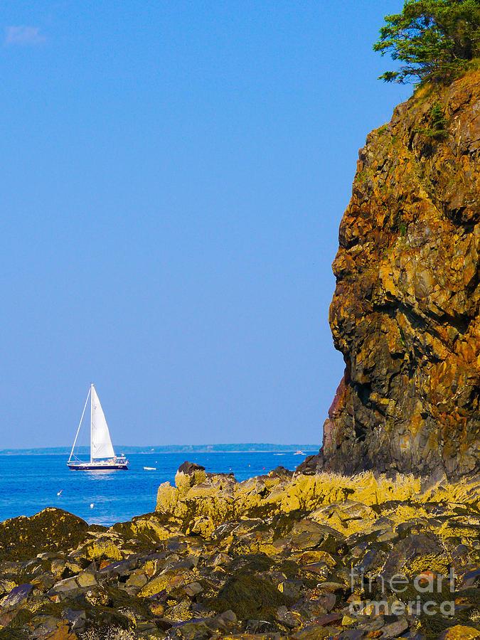 Sailing Photograph - Sailing - Portrait by Ernest Puglisi
