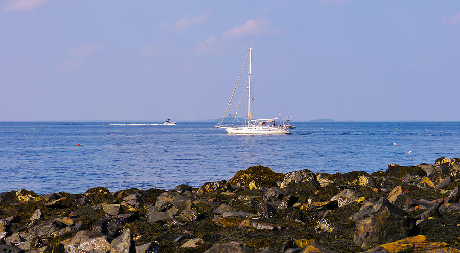 Coastal Photograph - Sailing - Wide by Ernest Puglisi