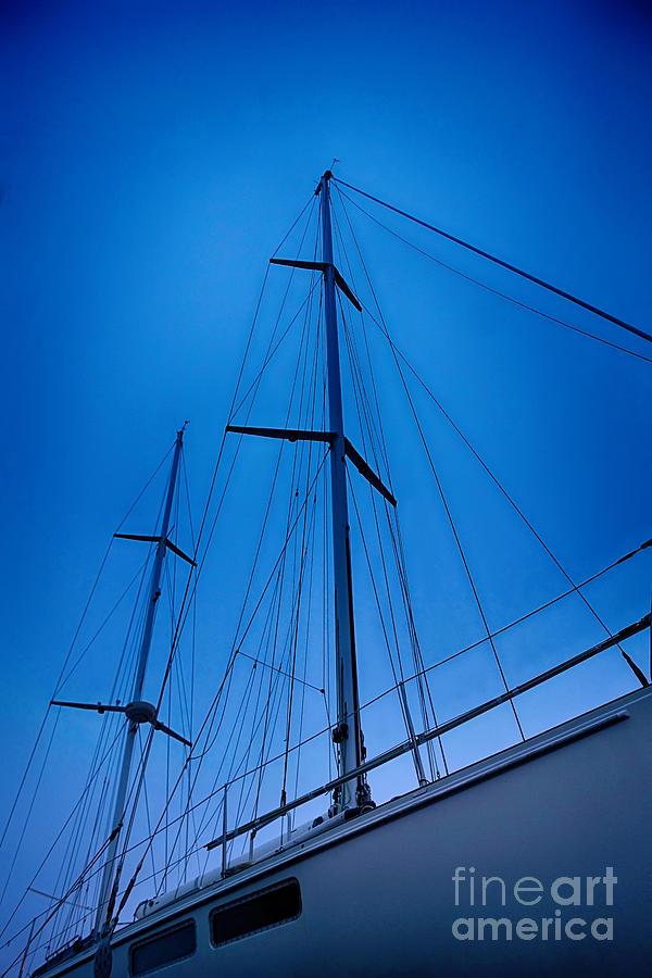 Sailors Web Photograph
