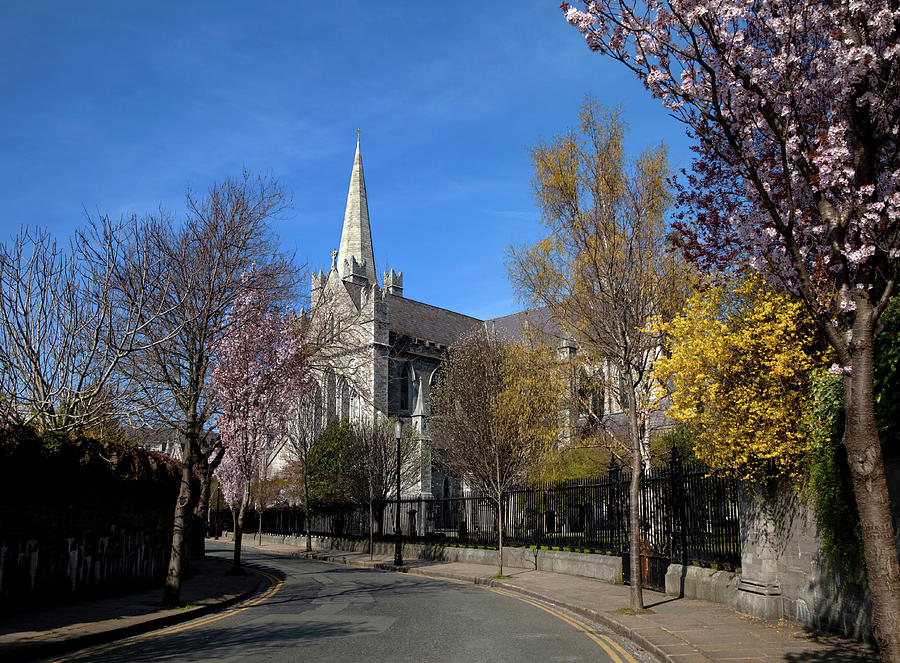 Horizontal Photograph - Saint Patricks Cathedral Founded by Panoramic Images