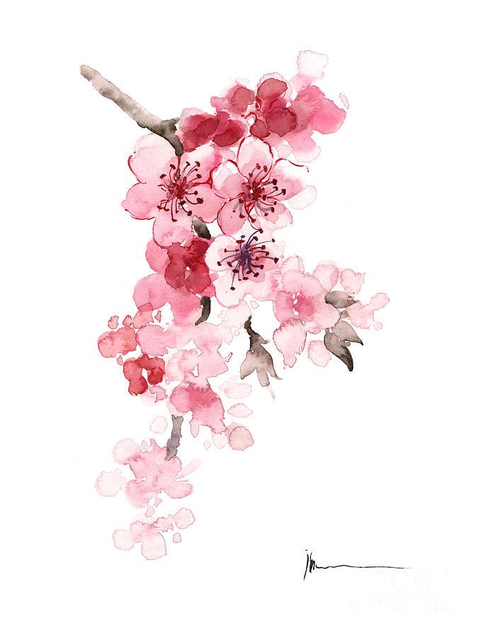 цветы. сакура. картинки