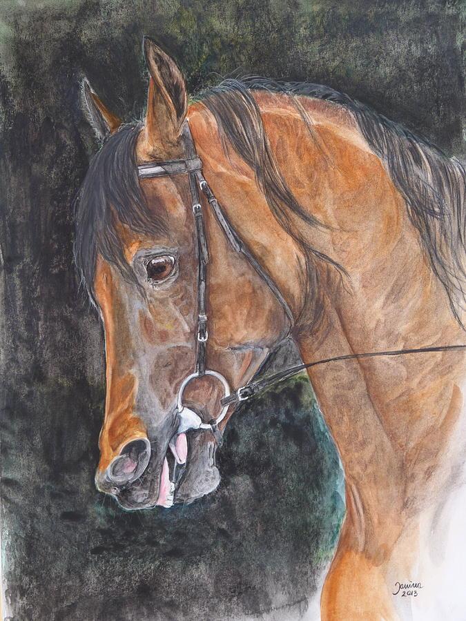 Equine Painting - Salih Amir by Janina  Suuronen