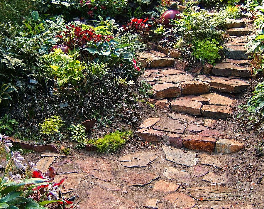 Patio Photograph - Sallys Garden by Nancy Harrison