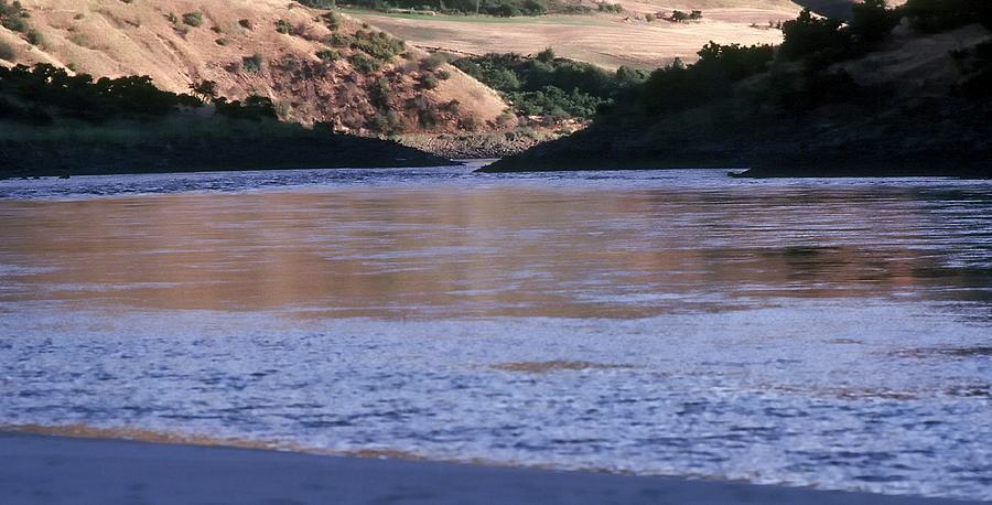 Salmon River Bank  9061 Photograph