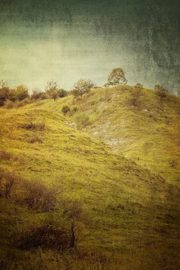 Landscape Photograph - Salt Meadow Mounds by Mandy Tabatt