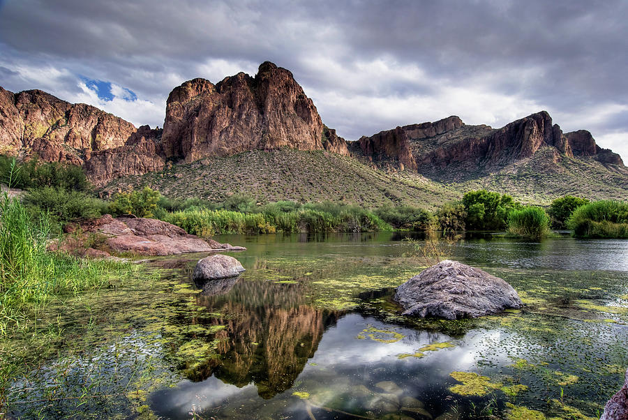 Salt River, Arizona Photograph by Image By Sean Foster