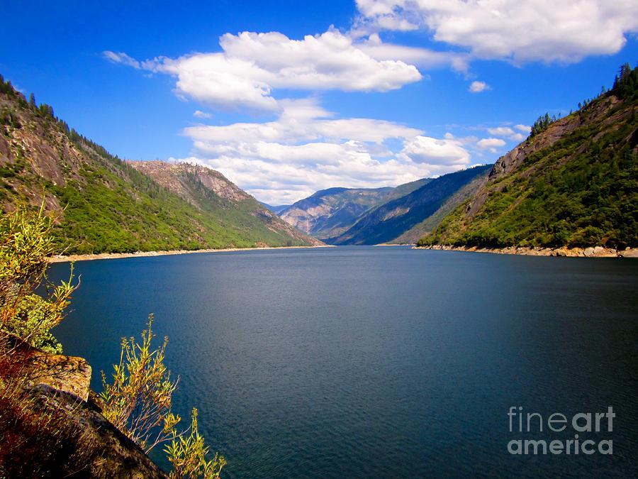 Water Photograph - Salt Springs by Dan Julien