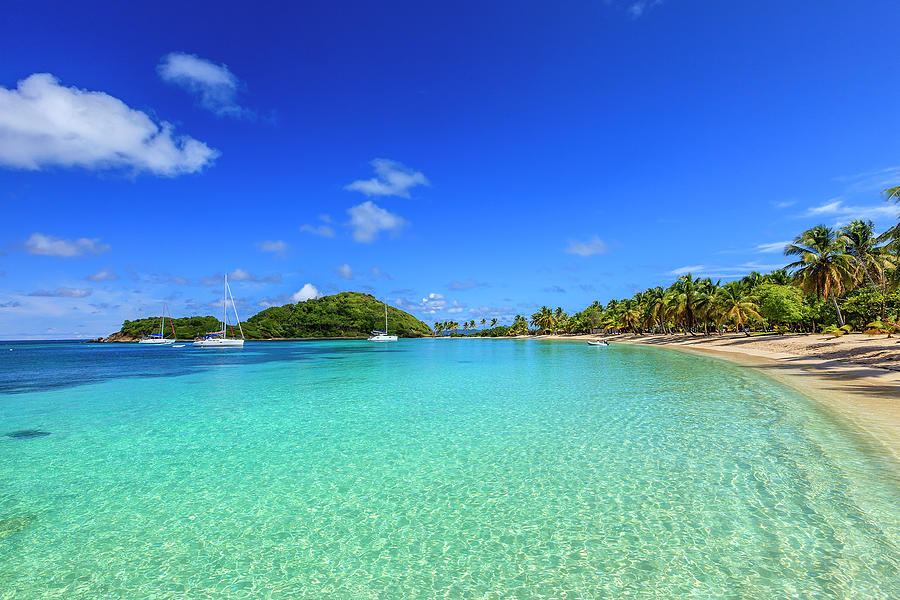 Salt Whistle Bay, Mayreau Photograph by Argalis
