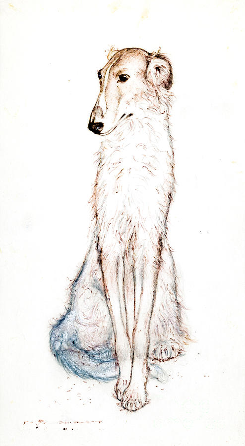 Saluki Drawing - Saluki by Kurt Tessmann