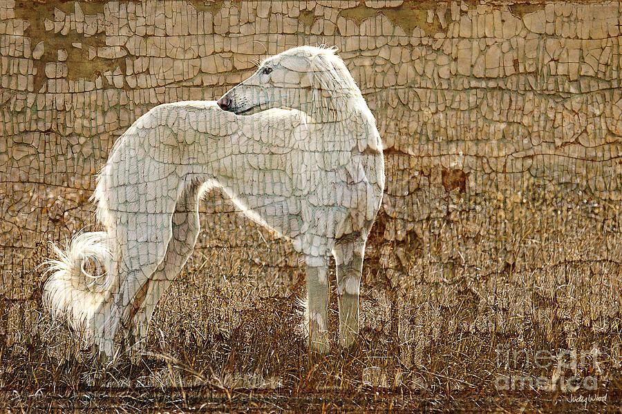 Saluki Digital Art - Saluki Texture by Judy Wood