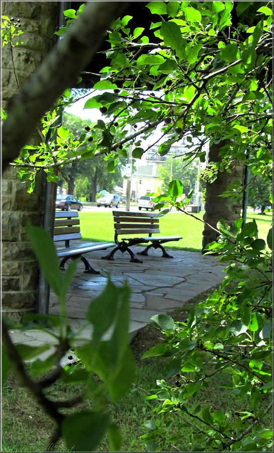 Nature Photograph - Sam Lawrence Park Hamilton 2 by Danielle  Parent