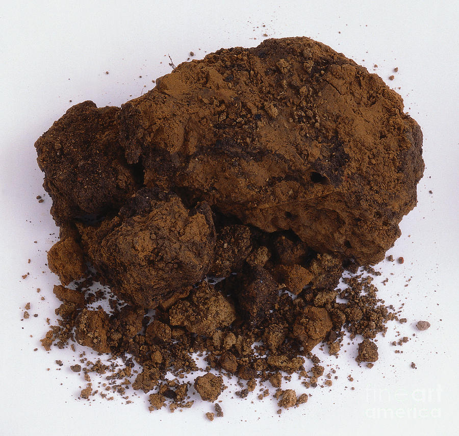 Clay Soil.Amending Garden Soil With Amending Garden Soil ...