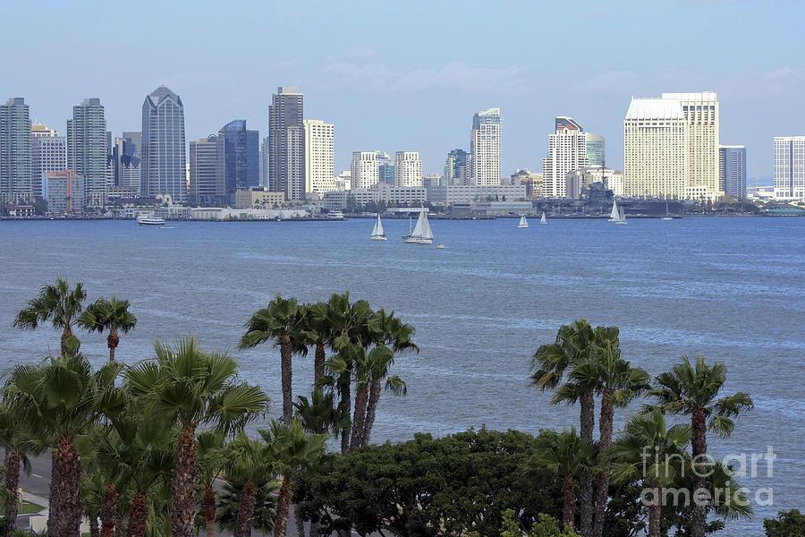 San Diego Photograph - San Diego Skyline by Sophie Vigneault