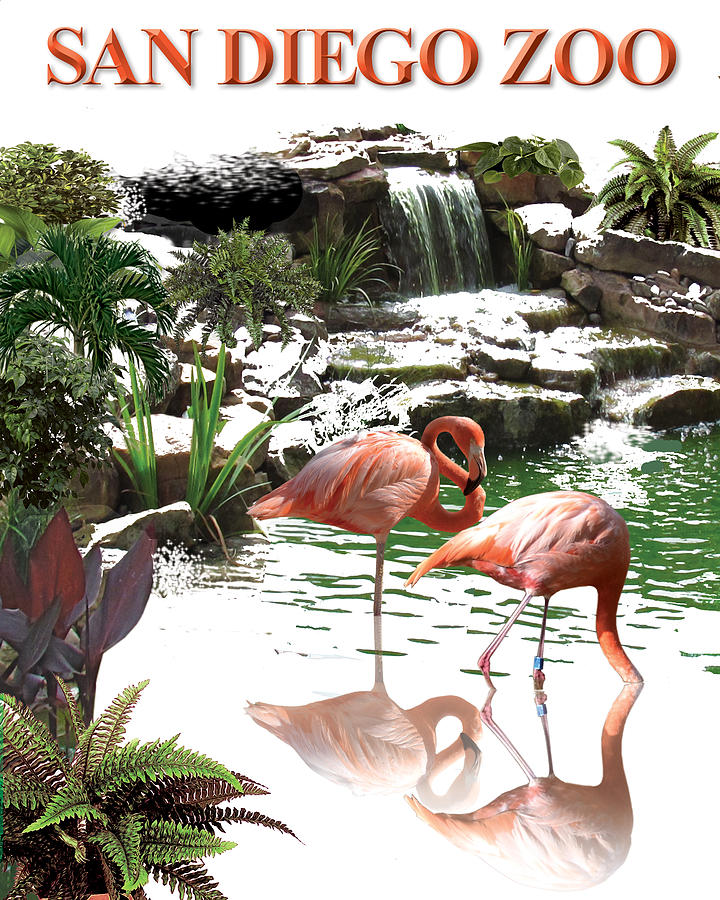 San Diego Zoo Poster Digital Art by Harold Shull