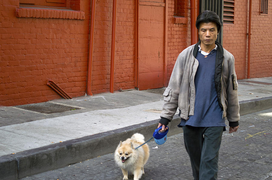 Chinatown Photograph - San Francisco Chinatown Dog Walker by Christopher Winkler