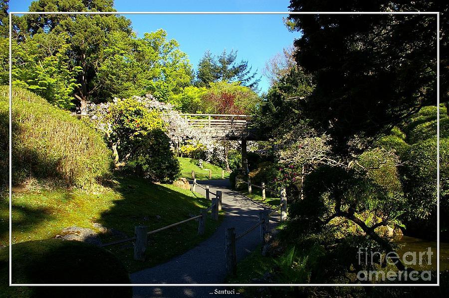 Pagodas Photograph - San Francisco Golden Gate Park Japanese Tea Garden 7 by Robert Santuci