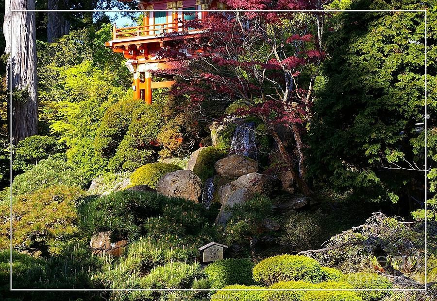 Pagodas Photograph - San Francisco Golden Gate Park Japanese Tea Garden 9 by Robert Santuci
