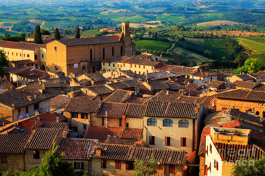 Europe Photograph - San Gimignano From Above by Inge Johnsson
