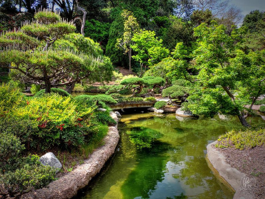 Huntington Library Photograph - San Marino - Huntington Botanical Gardens 004 by Lance Vaughn