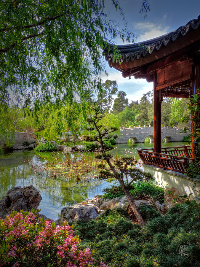 Huntington Library Photograph - San Marino - Huntington Botanical Gardens 006 by Lance Vaughn