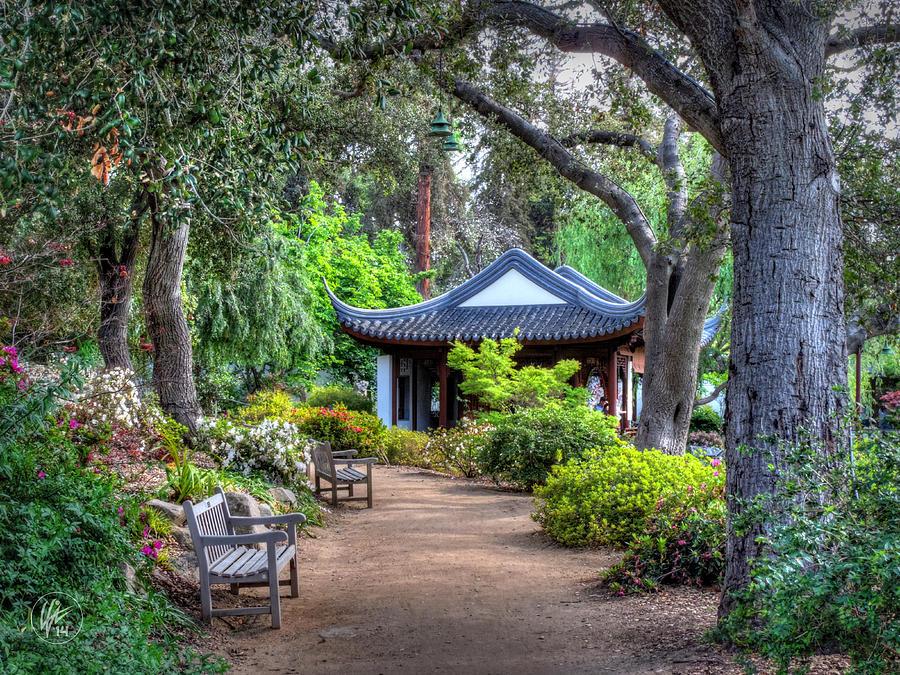 San Marino Huntington Botanical Gardens 007 Photograph By Lance Vaughn