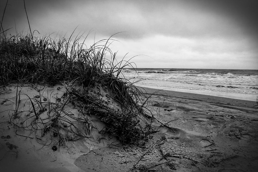 Sand Photograph - Sand Dune by Nelson Watkins