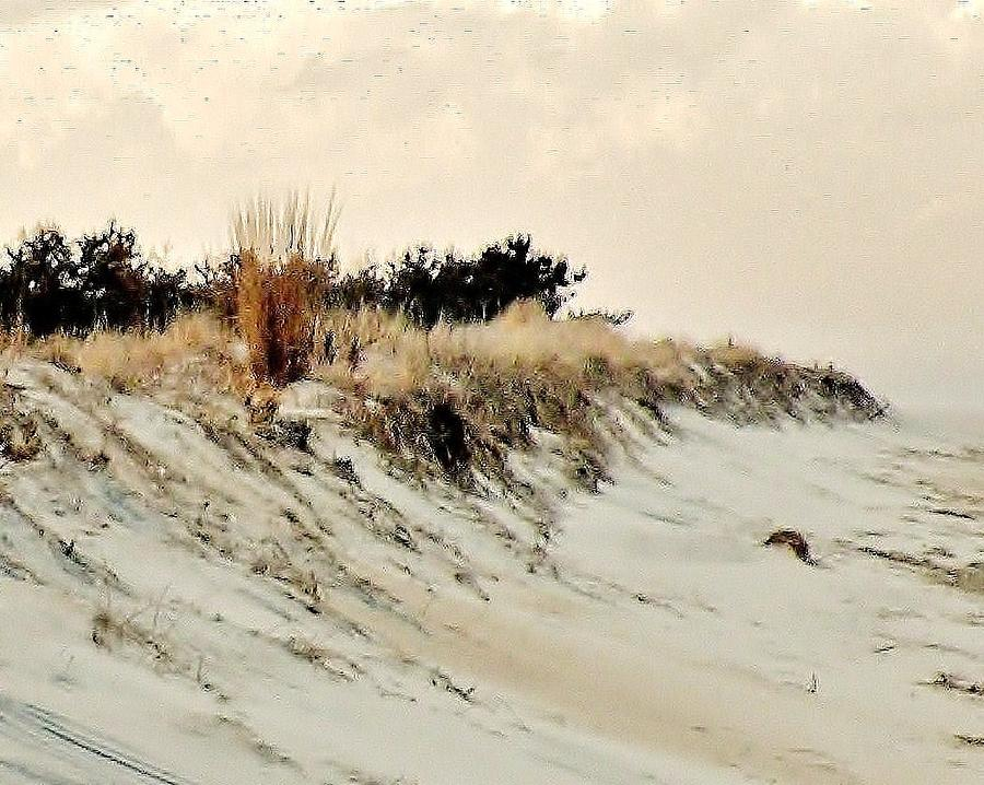 Sand Dunes Photograph - Sand Dunes At Penny Beach by Kim Bemis