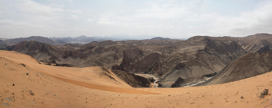 Color Image Photograph - Sand Dunes In A Desert, Hartmann by Panoramic Images