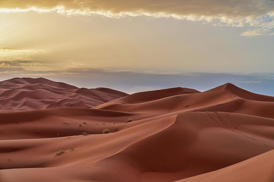 Sand Dunes In The Sahara Desert - Photograph by Starcevic