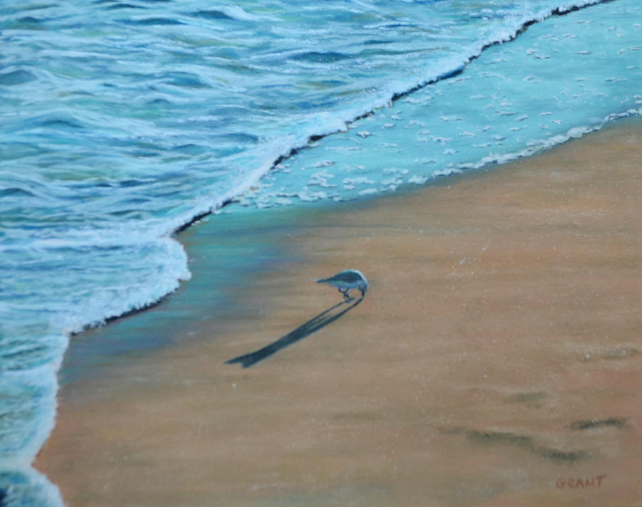 Sea Painting - Sand Piper by Joanne Grant