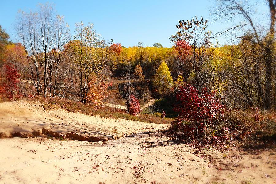 Michigan Photograph - Sand Pit by Scott Hovind