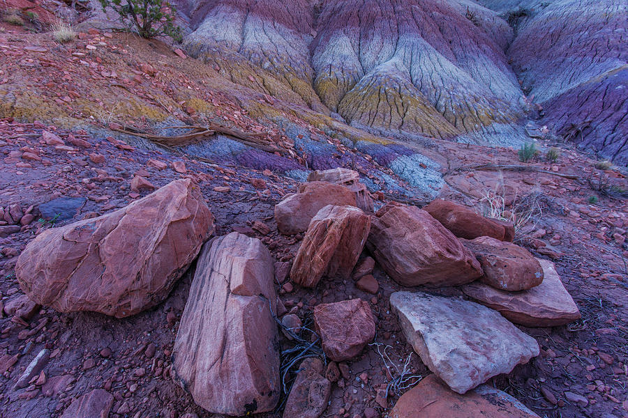 Sand Stone Rock Formation In Sw Usa Photograph by Gavriel Jecan