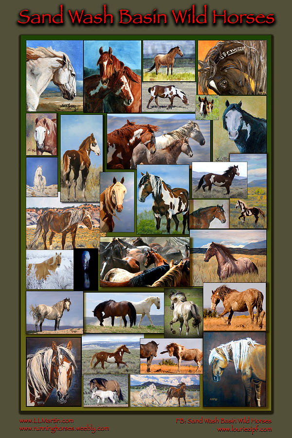 Mustangs Photograph - Sand Wash Basin Wild Horses by Lourie Zipf