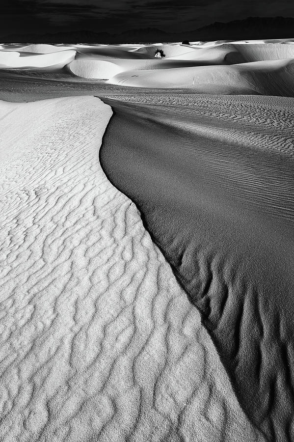 Desert Photograph - Sand Waves by Lydia Jacobs