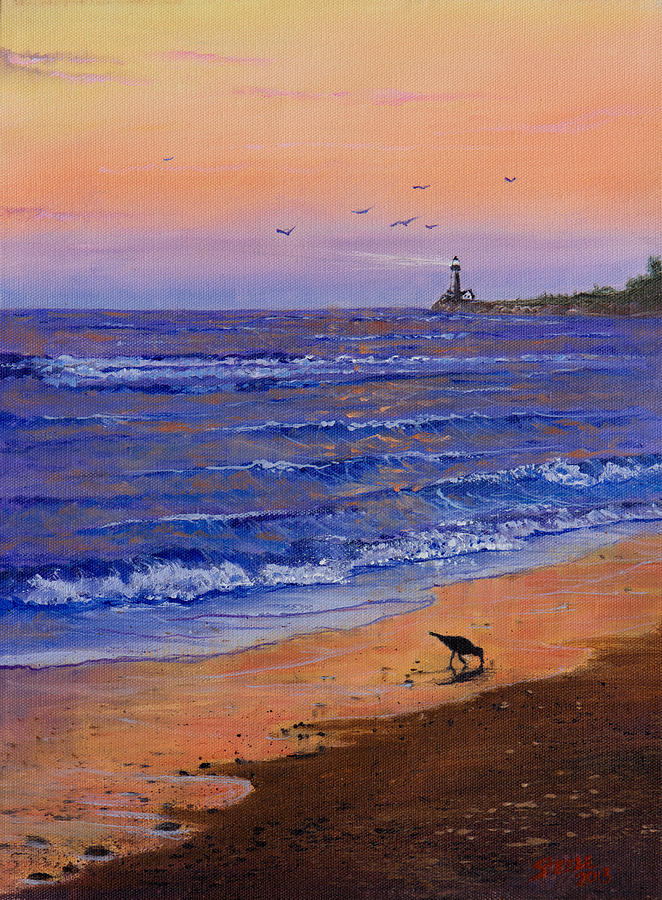 Ocean Painting - Sandpiper At Sunset by C Steele