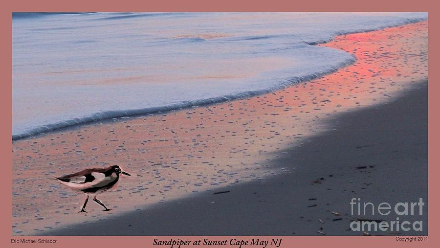 Sandpiper Photograph - Sandpiper At Sunset Print by Eric  Schiabor