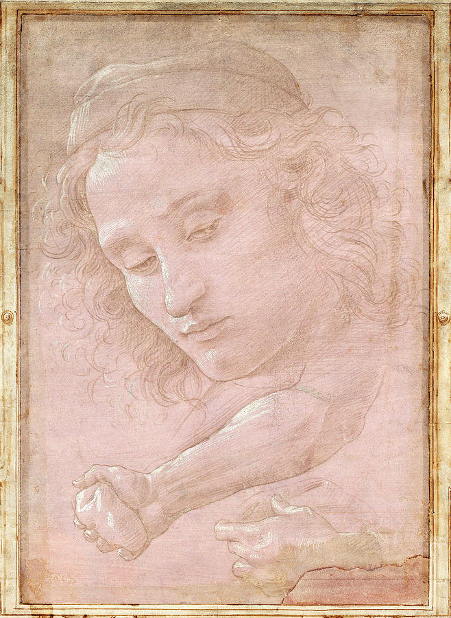 Botticelli Drawings