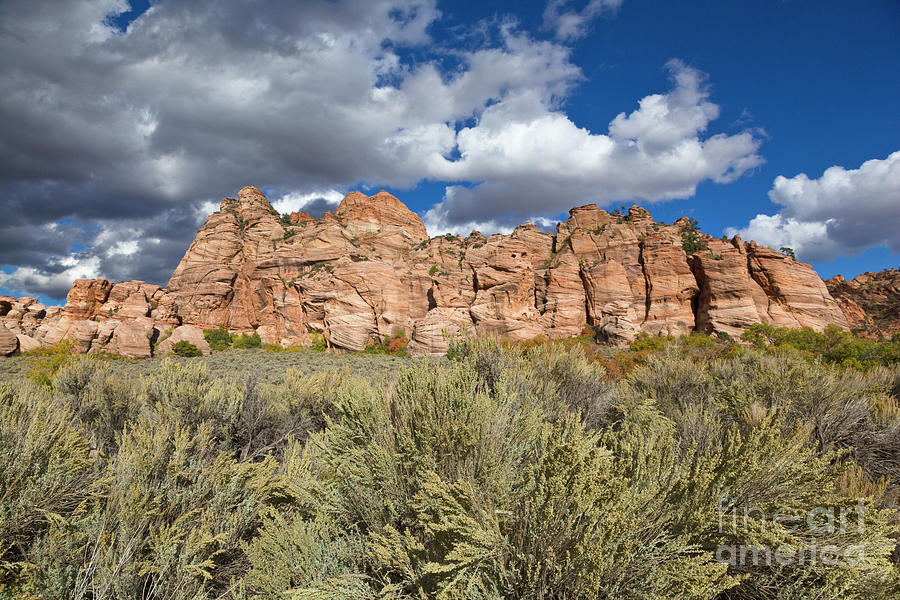 Photo Photograph - Sandstone And Clouds In Zion Natl Park Utah by Yva Momatiuk John Eastcott