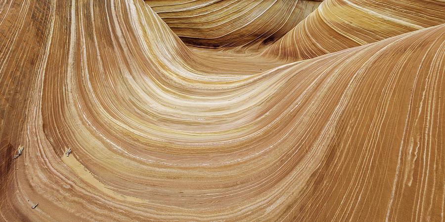 Vermilion Cliffs Photograph - Sandstone Lines by Chad Dutson