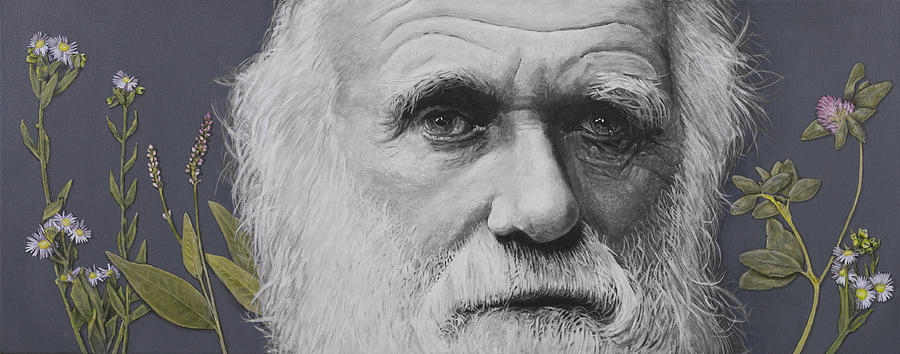 Evolution Painting - Sandwalk Wood- Charles Darwin.  by Simon Kregar