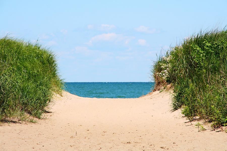 Beach Photograph - Sandy Beach by Heather Allen