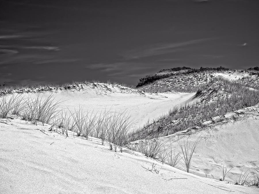 Sandy Neck Photograph - Sandy Neck Dunes 2 by Frank Winters