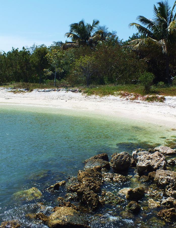 Sanibel Photograph - Sanibel Cove by Anna Villarreal Garbis