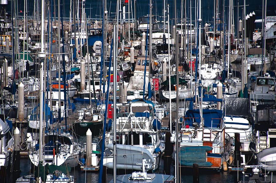 Santa Barbara Boats by Sandy Scharmer