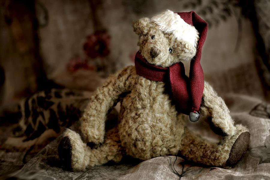 Bear Photograph - Santa Bear by Carol Leigh