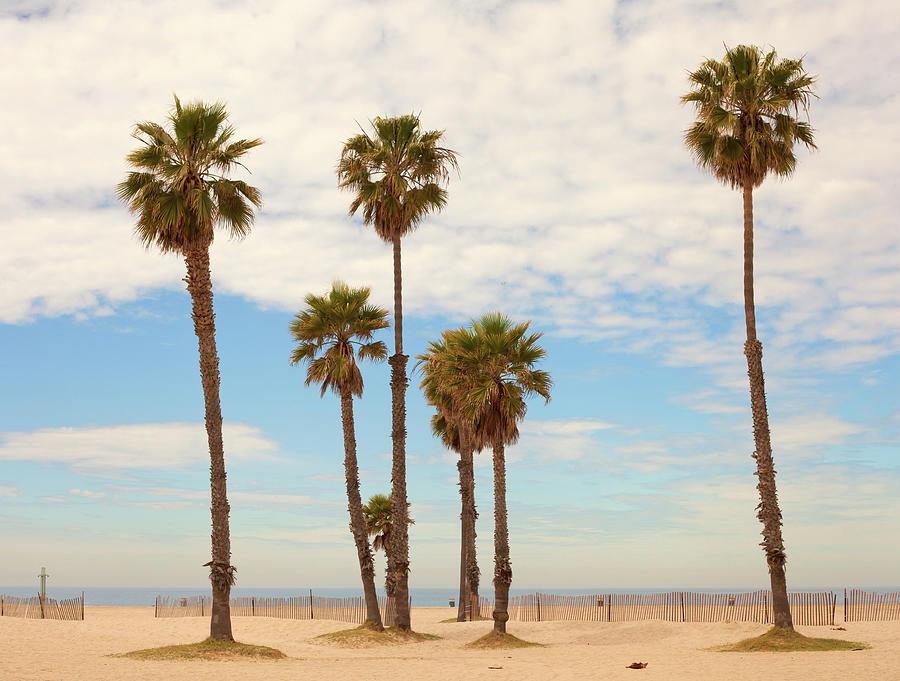 Santa Monica Beach Photograph by Stellalevi