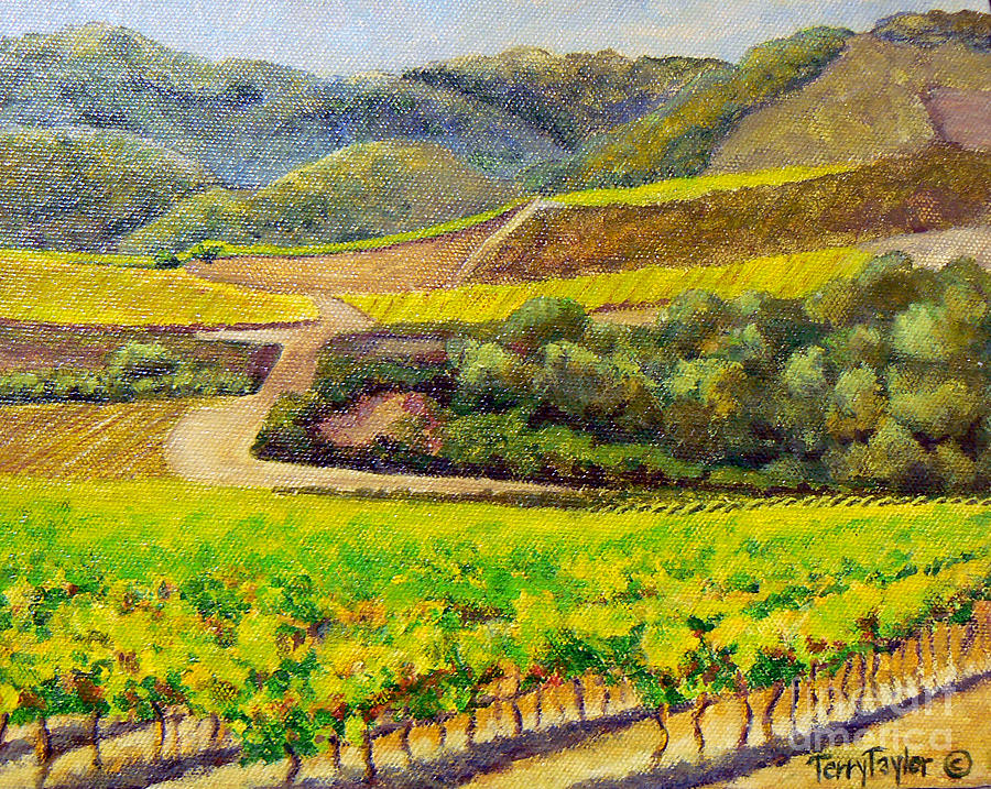 Santa Rita Hills Painting - Santa Rita Color by Terry Taylor